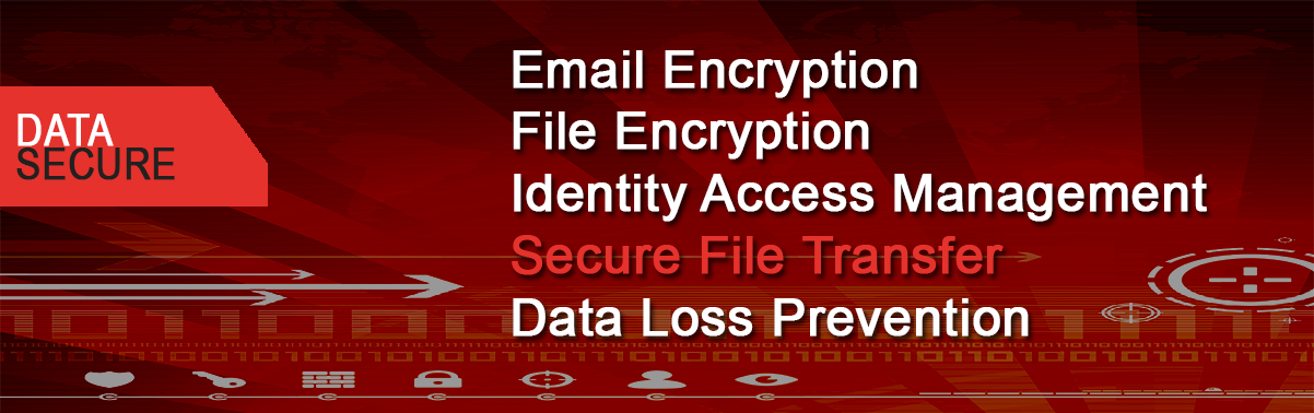 Data Secure Banner
